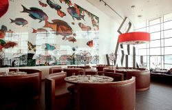 DARWIN'S CAFE, Belém, Lisbon